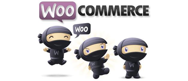 WooCommerce en Innonet; voor resultaatgerichte webshops