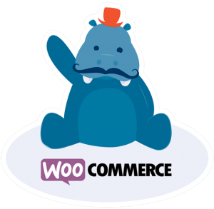 WooCommerce 2.3 update – Handsome Hippo