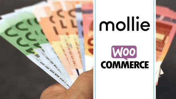 Mollie – Payment Service Provider voor WooCommerce