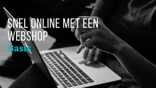 Snel online Webshop Basis